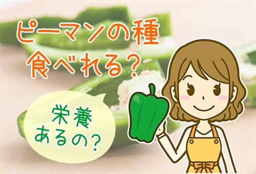 ピーマンを種ごと食べるのはあり?生でも大丈夫?食べやすいレシピも紹介